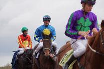 Renn-Reiter mit den Renn-Farben
