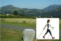 Marche nordique sur le mont URZUMU à ITXASSOU