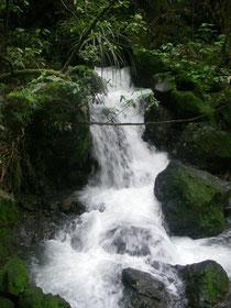 TNP - der Wasserfall, kurz vor dem Ziel