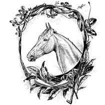 articoli per Cavalli