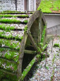 La roue du moulin de Jonchery