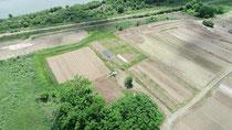 福祉市民体験農園 Oasis R  HP