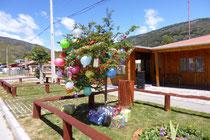 Christbaum vorm Kindergarten in El Maiten - und Stille Nacht, heilige Nacht tönt's aus dem Lautsprecher