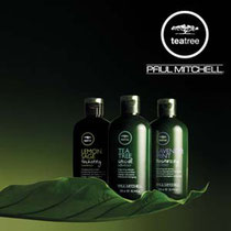 Tea Tree Paul Mitchell Coiffeur Memory