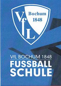 27. bis 29.06.2014  VfL-FUSSBALLSCHULE