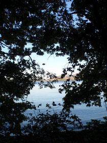 岬へ、湖岸へ向かって歩く。期待が高まる。
