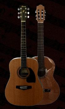 Akustikgitarre, Akustik-Gitarre