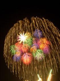 多種多彩な花火