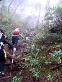 七倉尾根ははしご多く急登の連続