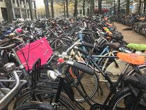 Fahrrad-Dominanz überall :-)