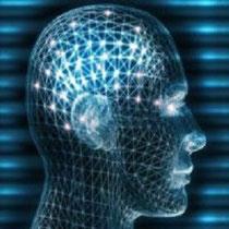 Head, Cyber