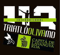 Logo del Capità 113MD Oliva