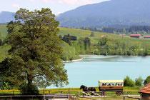 Blick vom Ferienhaus auf den großen Lechsee, Baden, Reiten, Wandern, Radeln, Segeln ...