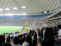 東京ドームでの野球観戦会