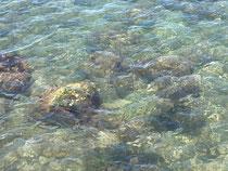 川の流れのように思考も常に流れるように心のデトックス