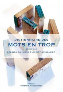 Couverture Dictionnaire des mots en trop Chronique littérature français dictionnaire langage expression guillaume cherel
