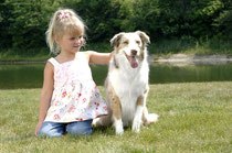 We will keep your pet safe in your yard.
