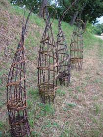 Rank-Kegel mit Apfeltrieben und Weide
