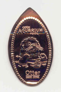 Aquarium - motief 6