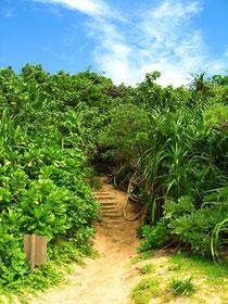 沖縄写真集『癒しの風に誘われて』