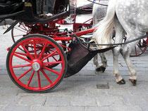 sauberes Wien Pferde.äpfel.auf.fang.behälter