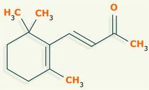 β-ionona estructura