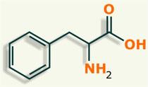 Fenilalanina aminoácido