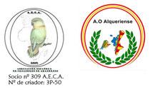 socio 309 A.E.C.A. Nº de criador 3P-50