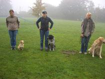 Sep.2008  --  Hundeführerschein mit Ben in Horst