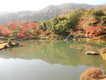 曹験池庭園