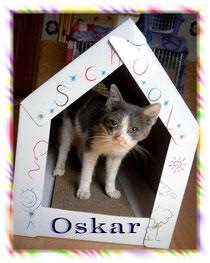 """""""Spendenfond Oskar"""""""