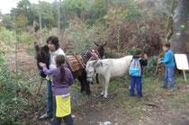 Les enfants s'approchent pour caresser les ânes qui sont bien braves...