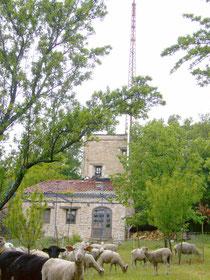 Lokalradio auf dem Berg Zinzine