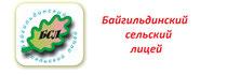 Сайт Байгильдинского сельского лицея