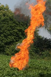 Eine beeindruckende Flamme erzeugt durch die Fettexplosion