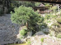 庭園から茶室を望む。さすが(住所が)大岩だけあって岩がオオイワ(‐‐;