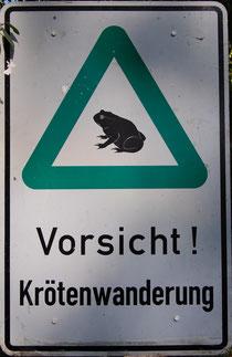 Bitte Hinweisschild beachten und Geschwindigkeit ab Dämmerungsbeginn auf möglichst 30 km/h senken, um tödliche Verwirbelungen der Kröten durch Ihr Auto zu vermeiden