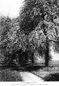 Pintoresco aspecto de una huerta en Miranda de Ebro 1922 (Periódico ABC)