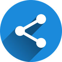 API・コンテンツ制作
