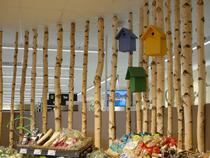 Birkenstrennwand im Ladenbau, Raumgestalung mit Birkenstämmen, Birkenstammtrennwand, Birkenstämme als Raumteiler, Birkenstämme für den Ladenbau, Individuelle Ladeneinrichtung für Obst- & Gemüseabteilung, Birkenstämmen rahmen die Obst- & Gemüseabteilung,