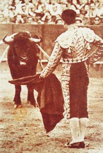 Biografía, taurina, toreros, célebres, historia, siglo XIX, siglo XX, figuras, maestros, matador, torero, grandes figuras, escritores.  Pepe Luis Vázquez