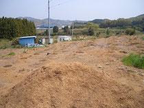 第1畑ブルーベリー苗植付