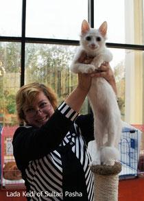 Lada Kedi Congeniality of Sultan Pasha - 4 m.o. WCF BEst Kitten, Astana, 09/24-25/11