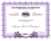 Certificate TICA GEraylar Gurg Geray - Supreme Grand Champion