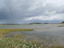 Tolle Landschaft - tolle Wolken - toller Tag!