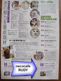 埼玉新聞別冊掲載記事