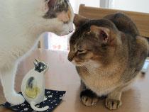 笠間焼きの猫人形とアビ君