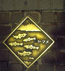 相模川や丹沢のイメージか