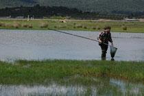 Mostrejant en una bassa