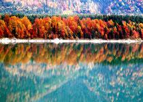 Herbstfarben am Sylvenstein